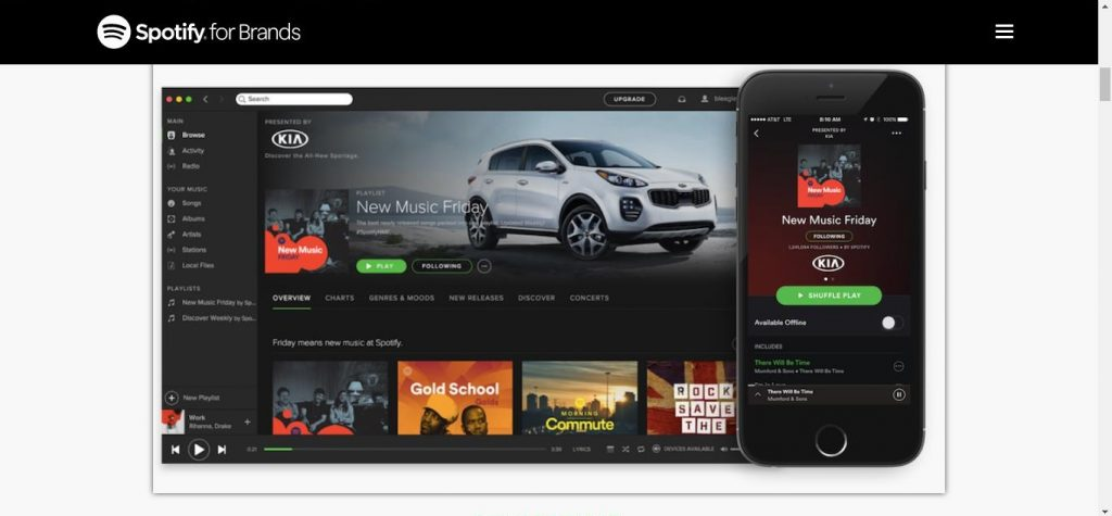 Spotify for Brands boyut